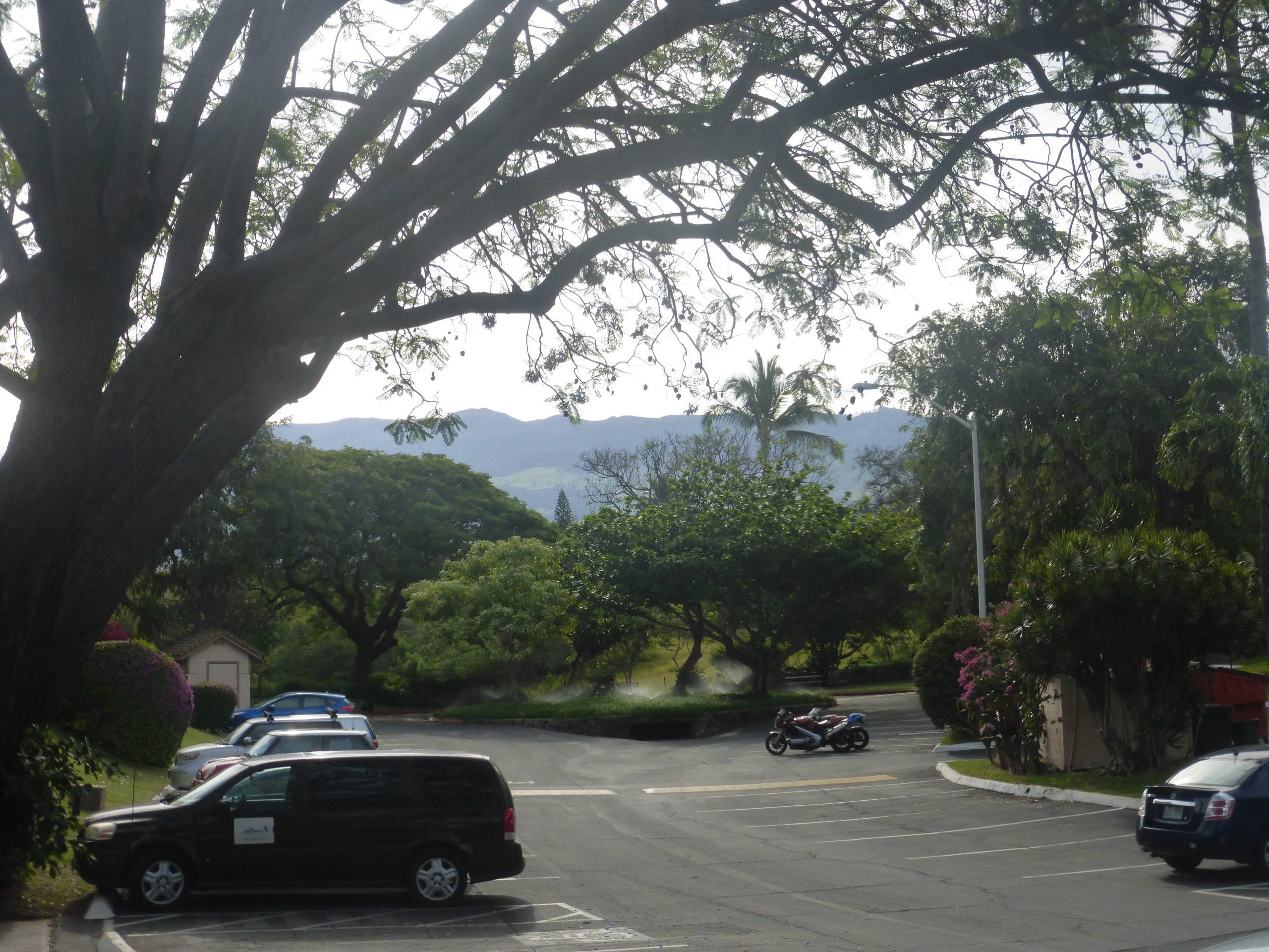 View of Haleakala from KKN Parking lot